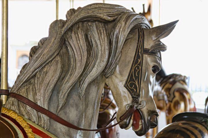 Carousel Pony - Photography by Alana I Thrower