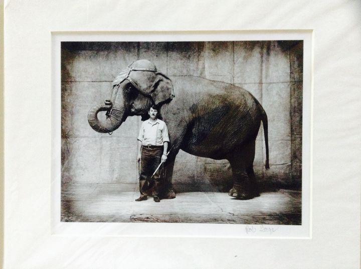"""""""Jumbo"""" $150.00 - Shockley collection"""