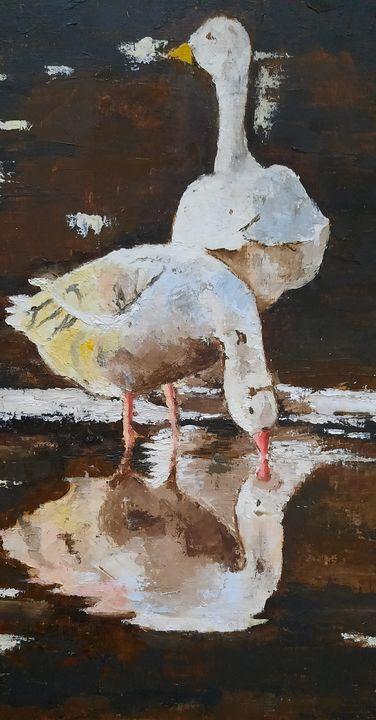 Garden ducks - zilishyaa