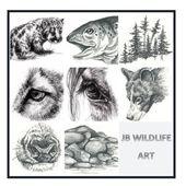 Wildlife Art - Jaimie Barchus