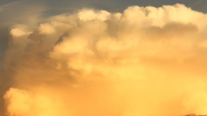 Golden Storm - JAVE