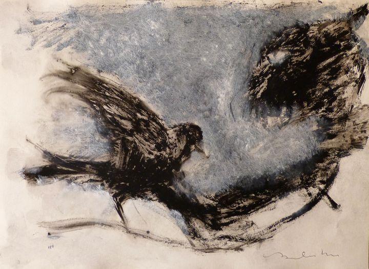 Birds - Frederic Belaubre