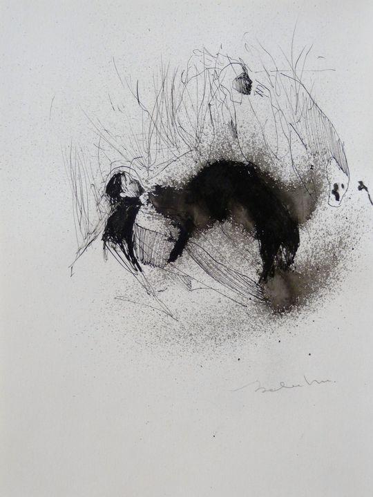 The black cat - Frederic Belaubre