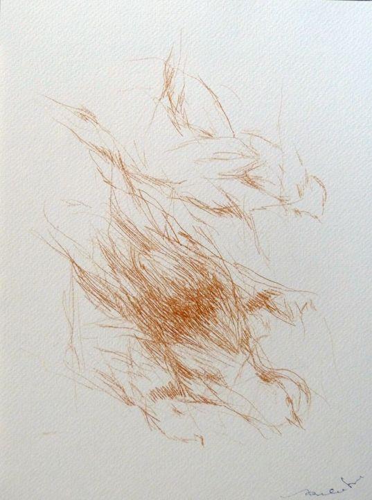The birds C20-1 - Frederic Belaubre