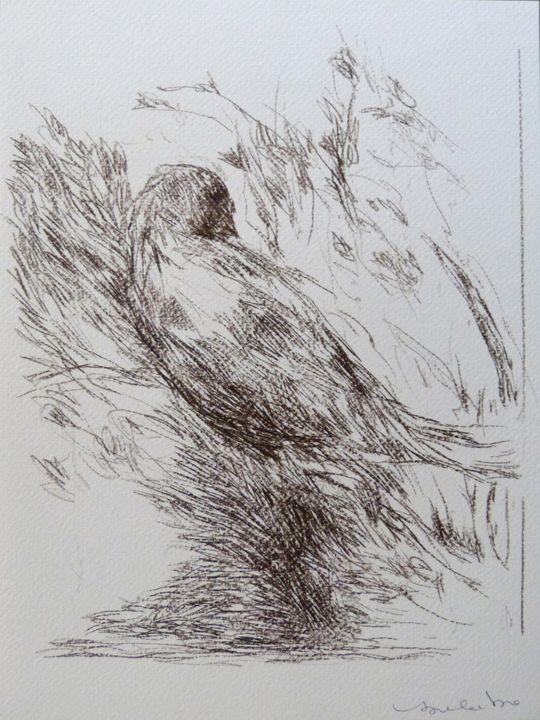The birds C20-2 - Frederic Belaubre
