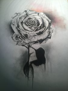 Rose pencil charcoal drawing