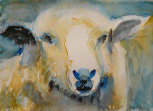 A Watercolour Sheep