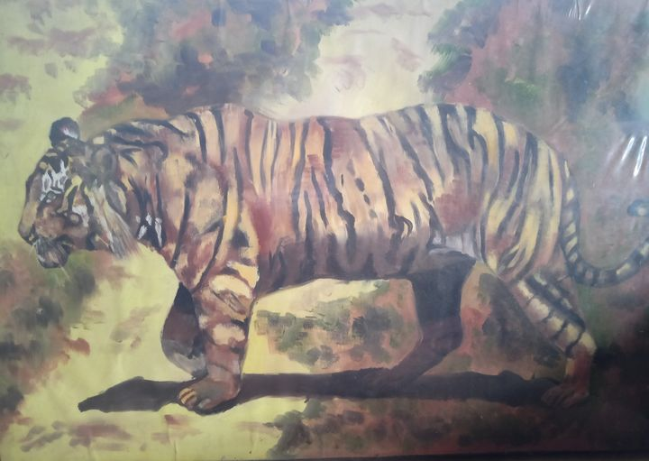 Tiger on way - Sudhir