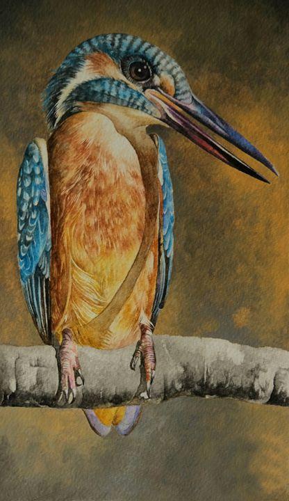 Kingfisher - Nature Art