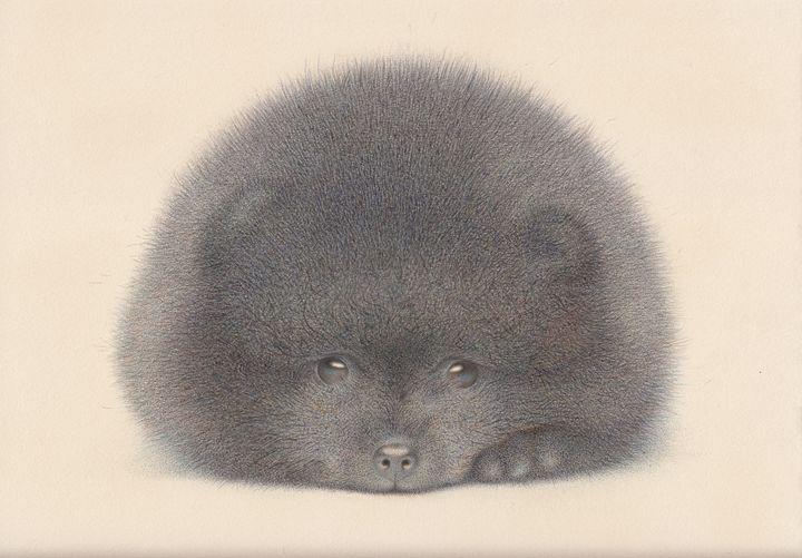 Black Pomeranian puppy - Irshi watercolors