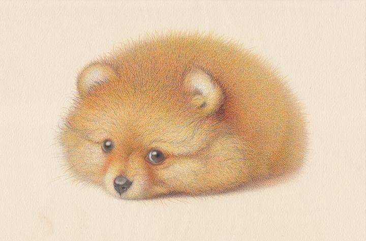 Ginger Pomeranian puppy - Irshi watercolors