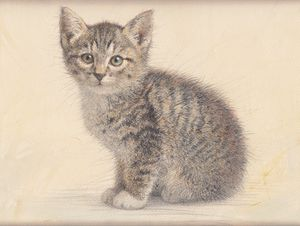 Gray kitty watercolor by Irshi