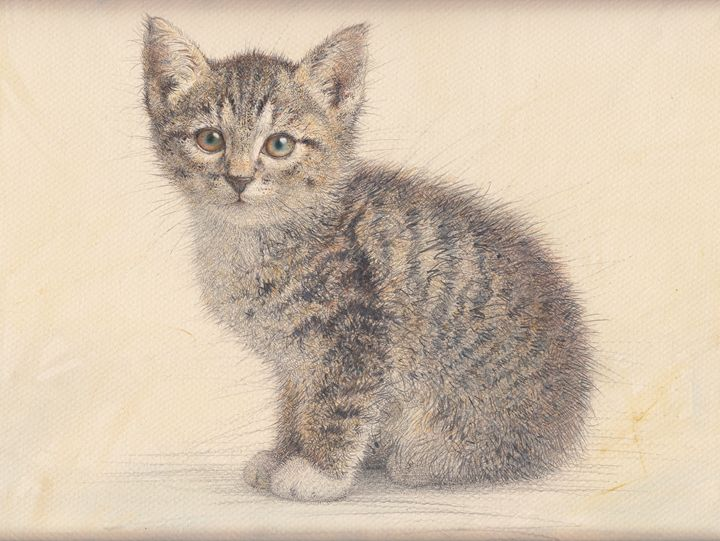 Gray kitty watercolor by Irshi - Irshi watercolors