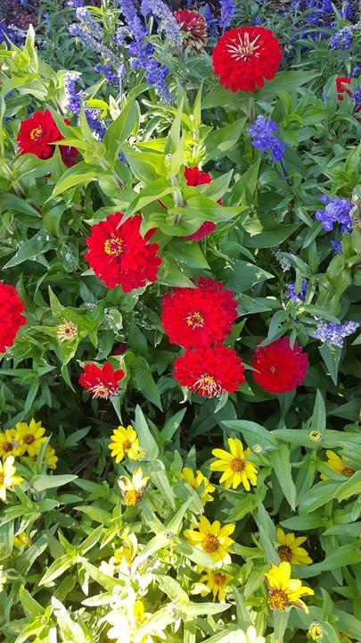 My flowers - Life