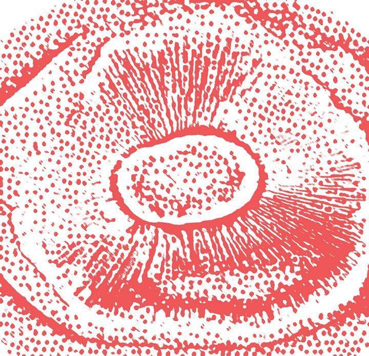 Portobello mushroom v3 - Mr.eye