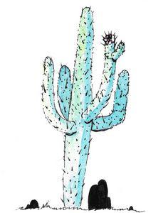 Cereus Giganteus