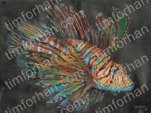 Lion Fish - Tim Forhan Art Gallery