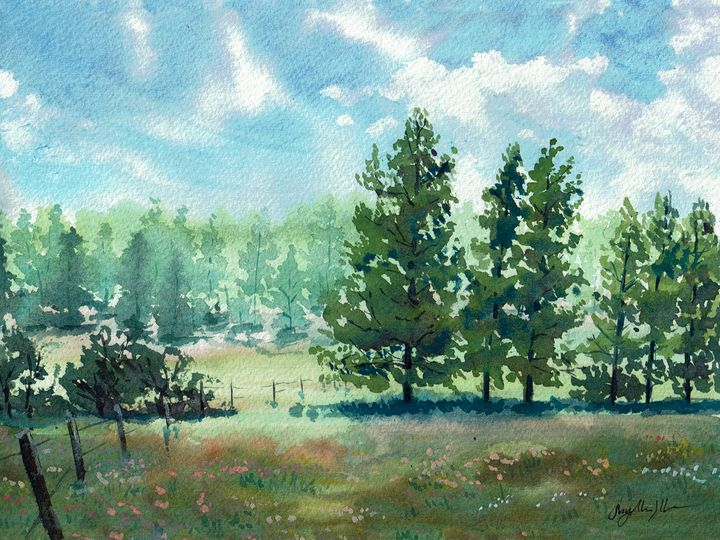 Meadow by Lake Mary - Suzys Art