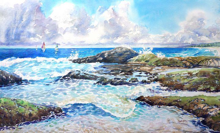 California Catamarans - Suzys Art