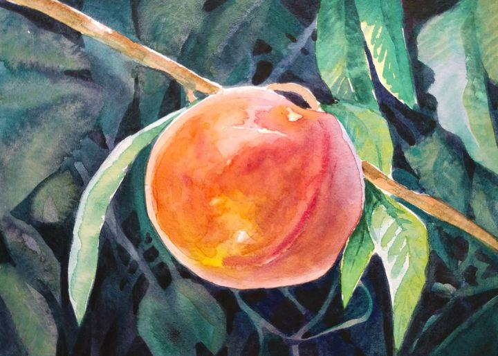 Peachy - Suzys Art