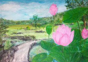 Rainbow Reflection Over Lotus Garden