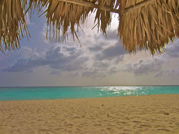 ARUBA TIKI HUT OCEAN BEAUTY - Tirzah Fujii