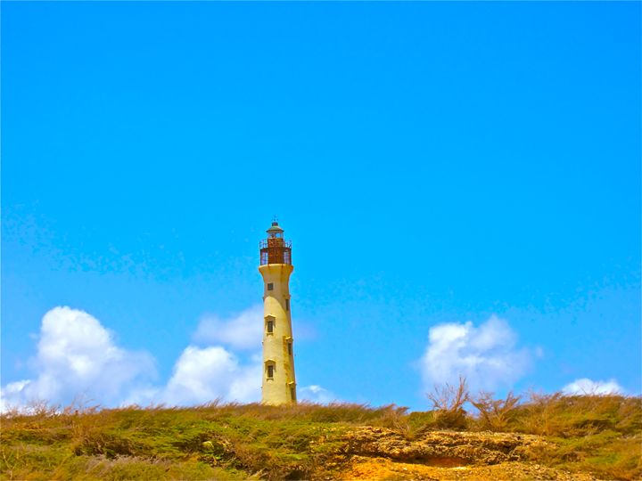 PICTURE PERFECT PARADISE LIGHT-HOUSE - Tirzah Fujii