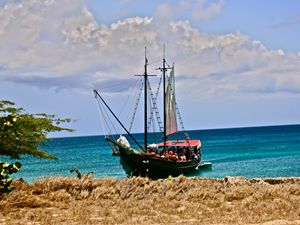 TROPICAL TALL-SHIP