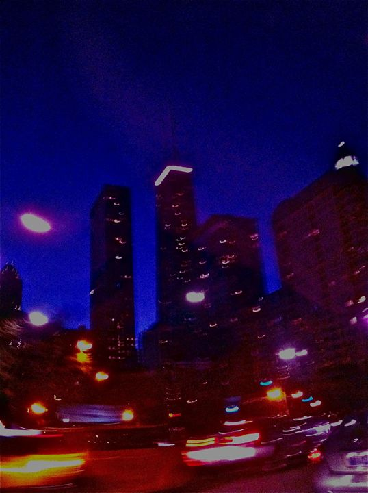 CHICAGO CITY TRAVEL - Tirzah Fujii