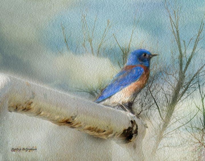 Little Blue Bird - Restless D Graphics