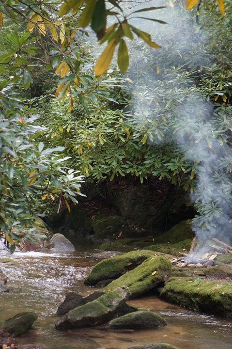 Creekside Campfire - Buddhaful Vision