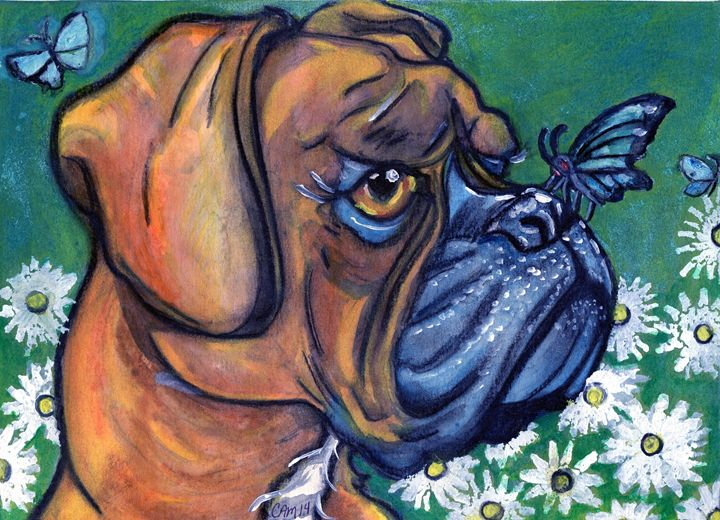 Boxer, Daisies, and Butterflies - Crystal Ann Masters