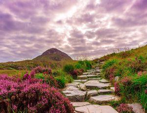 PARADISE - CONNEMARA ON IRLANDE