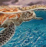 Original turtle painting acrylics