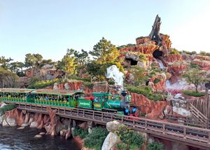 Splash Mountain railroad