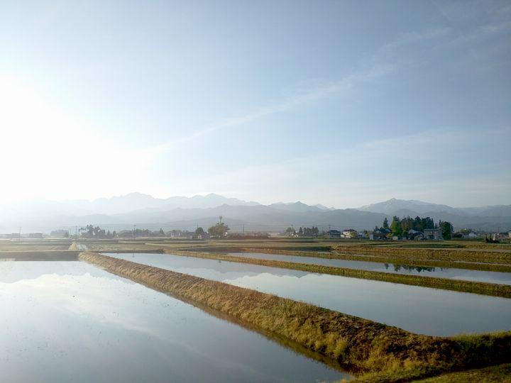Fields of Morning - Hanabi