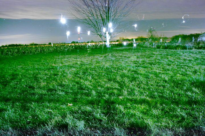 Spirits at Pray - Phosphorescence