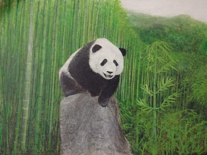 panda - H