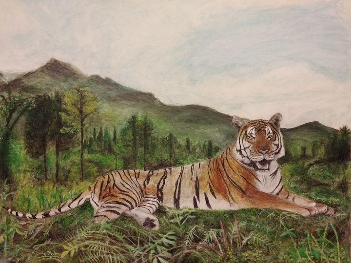 tiger - H