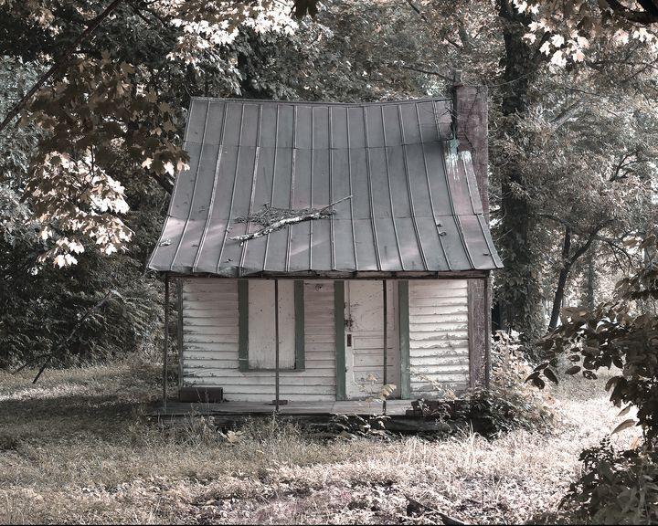 The Original Tiny House - Wild Woods