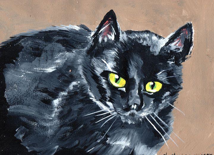 Black Cat - Stephanie