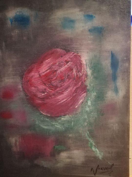 Rose - Sebra
