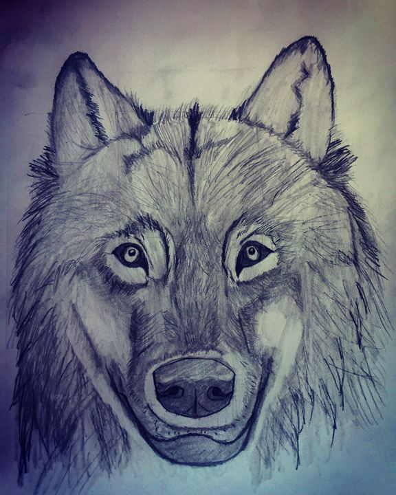 Wolf Face - Pencil & Paper