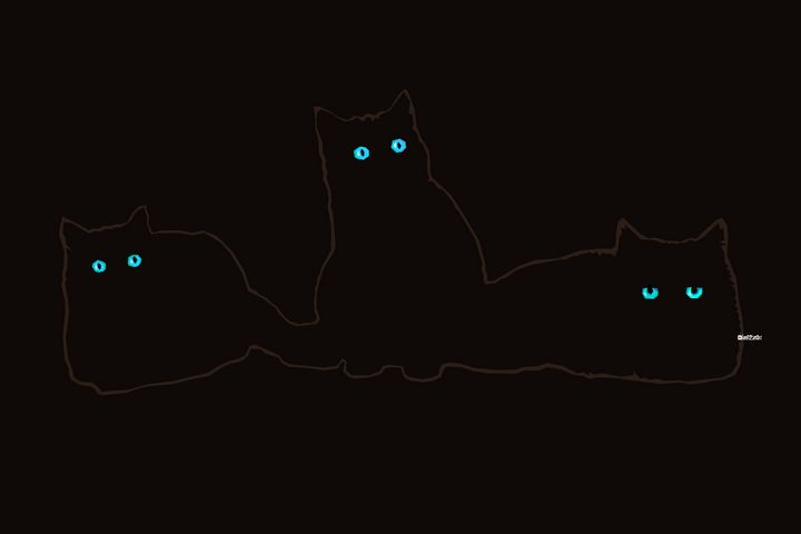 Cats in the Dark - Zelko Radic Bfvrp
