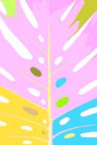 Colorful Philadendron Leaf