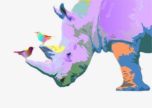 Rhino and Birds