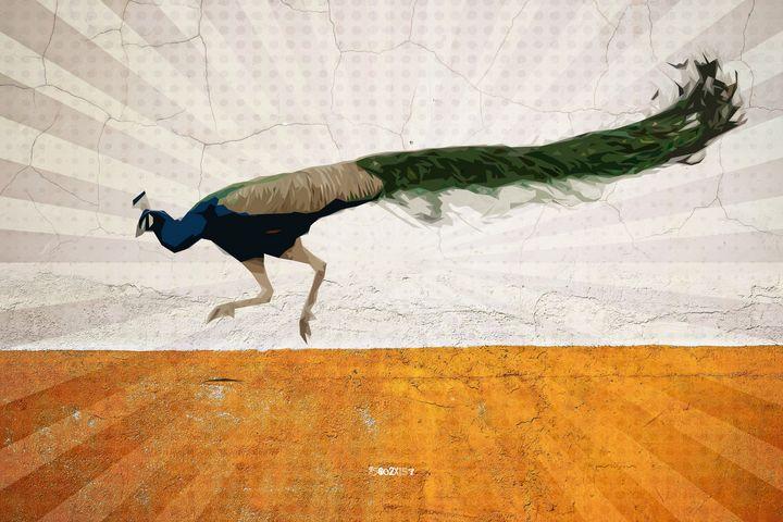 Peacock - Zelko Radic Bfvrp