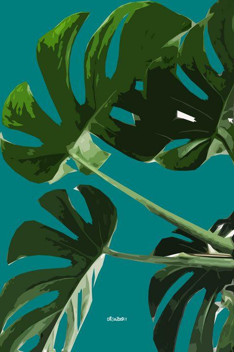 Philadendron Plant - Zelko Radic Bfvrp