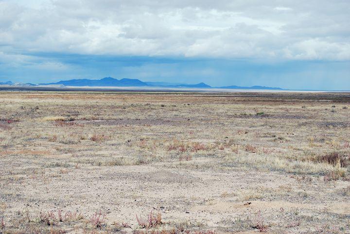 Desert Meadow - Sonya Marie Photography