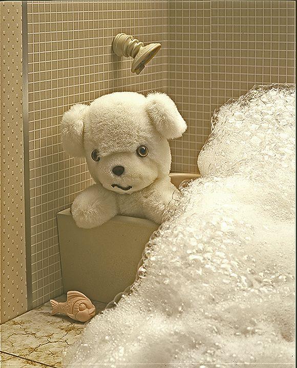 At  the  Bath - holyhollys